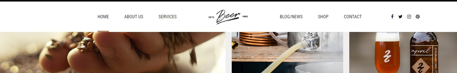 http://documentation.bold-themes.com/craft-beer/wp-content/uploads/sites/17/2016/07/sticky-header-1.jpg
