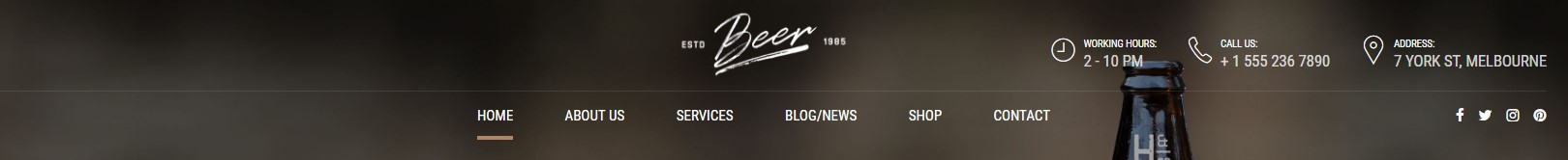 http://documentation.bold-themes.com/craft-beer/wp-content/uploads/sites/17/2017/06/menu-below-center.jpg