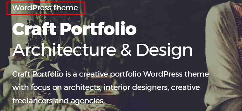 http://documentation.bold-themes.com/craft-portfolio/wp-content/uploads/sites/24/2017/09/heading-supertitle.jpg