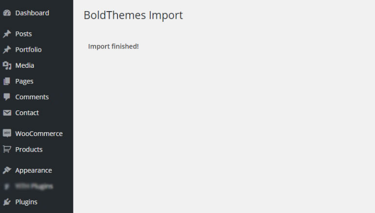 http://documentation.bold-themes.com/ohlala/wp-content/uploads/sites/26/2017/11/finished-bt-import.jpg
