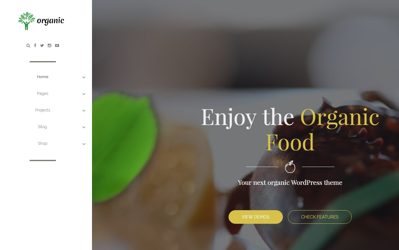 http://documentation.bold-themes.com/organic-food/wp-content/uploads/sites/6/2016/07/26-1.jpg