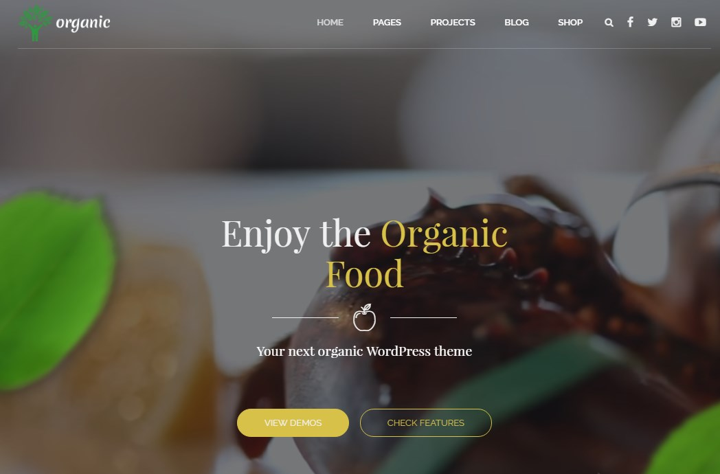 http://documentation.bold-themes.com/organic-food/wp-content/uploads/sites/6/2016/07/28-1.jpg