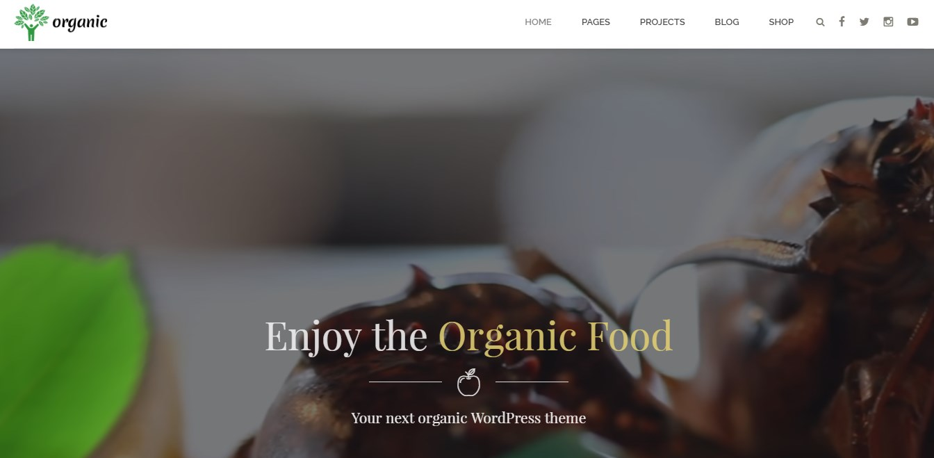 http://documentation.bold-themes.com/organic-food/wp-content/uploads/sites/6/2016/07/29-1.jpg