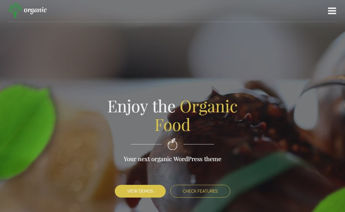 http://documentation.bold-themes.com/organic-food/wp-content/uploads/sites/6/2016/07/33-1.jpg