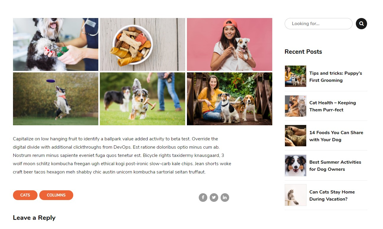 http://documentation.bold-themes.com/pawsitive/wp-content/uploads/sites/45/2019/08/blog-grid-gallery.jpg