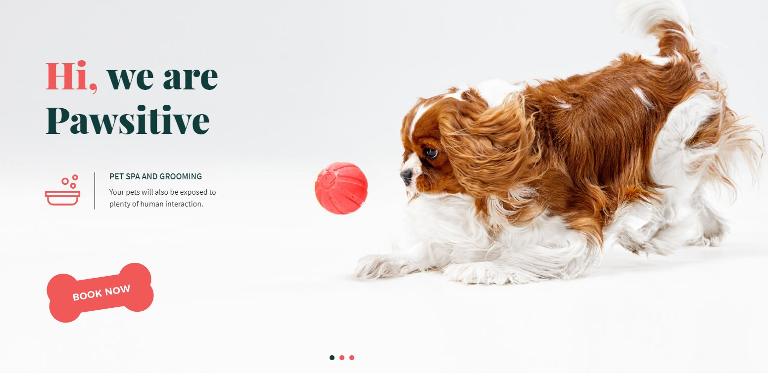 http://documentation.bold-themes.com/pawsitive/wp-content/uploads/sites/45/2019/08/slider-f.jpg