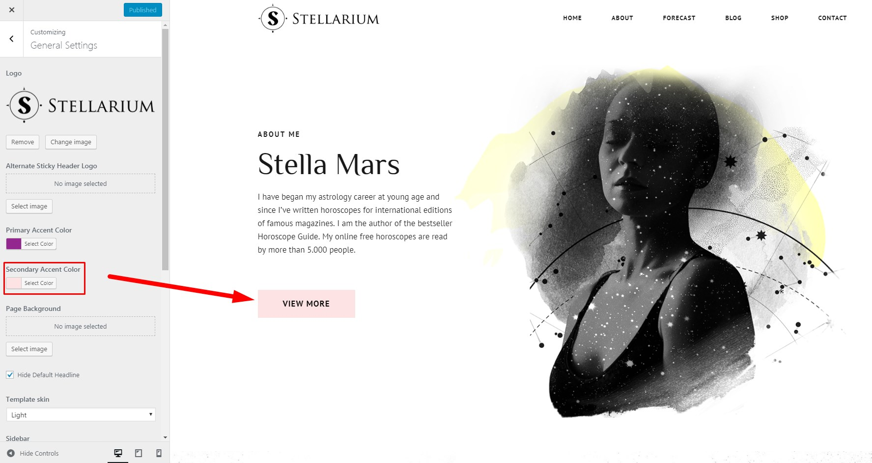 http://documentation.bold-themes.com/stellarium/wp-content/uploads/sites/34/2018/06/stellarium-customize-03.jpg