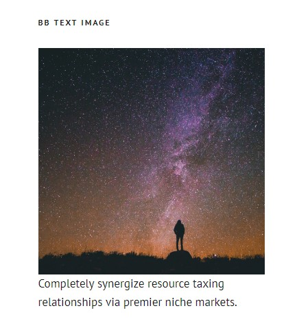http://documentation.bold-themes.com/stellarium/wp-content/uploads/sites/34/2018/12/bb-text-image.jpg