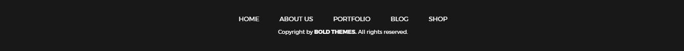 https://documentation.bold-themes.com/addison/wp-content/uploads/sites/18/2017/06/footer-dark-skin.jpg