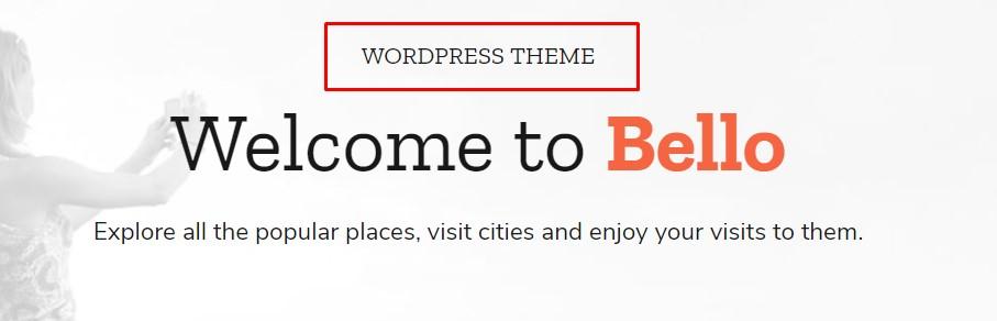 https://documentation.bold-themes.com/bello/wp-content/uploads/sites/31/2018/03/heading-supertitle.jpg