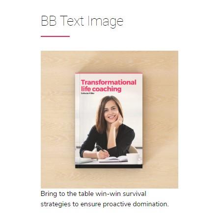 https://documentation.bold-themes.com/celeste/wp-content/uploads/sites/30/2018/12/bb-text-image.jpg