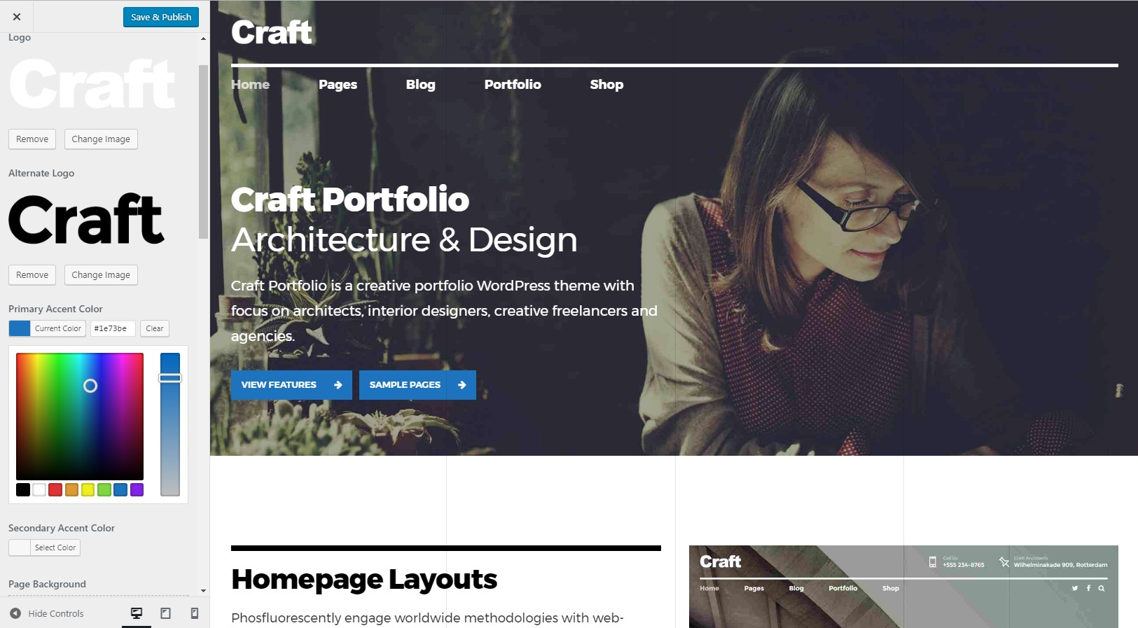 https://documentation.bold-themes.com/craft-portfolio/wp-content/uploads/sites/24/2017/09/accent-color.jpg