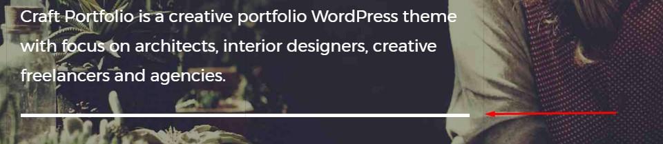 https://documentation.bold-themes.com/craft-portfolio/wp-content/uploads/sites/24/2017/09/separator_f.jpg