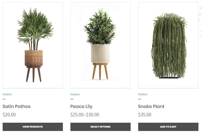 https://documentation.bold-themes.com/gardena/wp-content/uploads/sites/50/2019/10/single-product-f.jpg