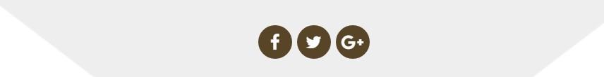 https://documentation.bold-themes.com/hotel/wp-content/uploads/sites/2/2017/06/iconimage2.jpg