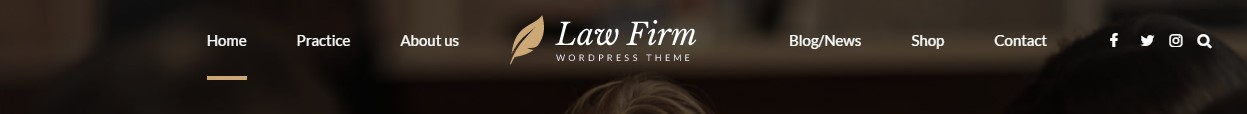 https://documentation.bold-themes.com/law-firm/wp-content/uploads/sites/15/2017/05/hcenter.jpg