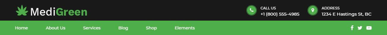 https://documentation.bold-themes.com/medigreen/wp-content/uploads/sites/40/2019/02/header-accent-dark.jpg