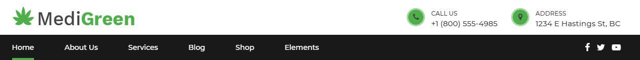 https://documentation.bold-themes.com/medigreen/wp-content/uploads/sites/40/2019/02/header-light-dark.jpg