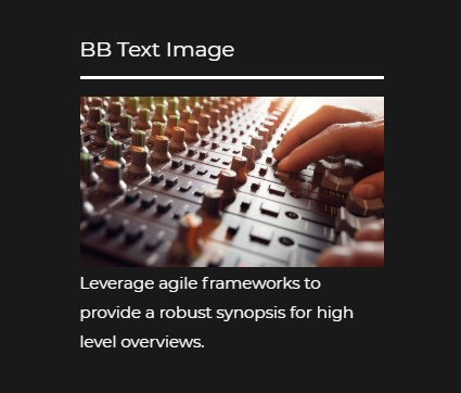 https://documentation.bold-themes.com/music-club/wp-content/uploads/sites/19/2018/12/bb-text-image.jpg