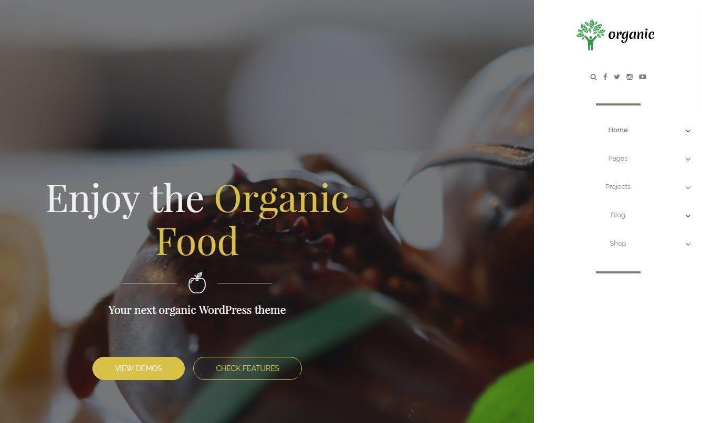 https://documentation.bold-themes.com/organic-food/wp-content/uploads/sites/6/2016/07/27-1-e1477310213234.jpg