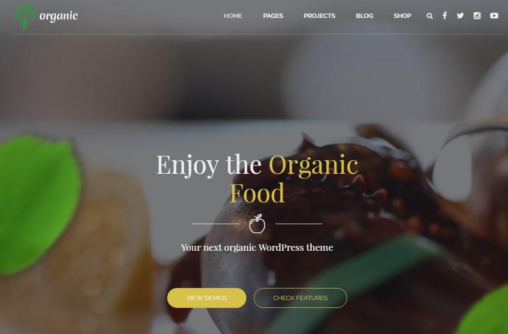 https://documentation.bold-themes.com/organic-food/wp-content/uploads/sites/6/2016/07/28-1.jpg