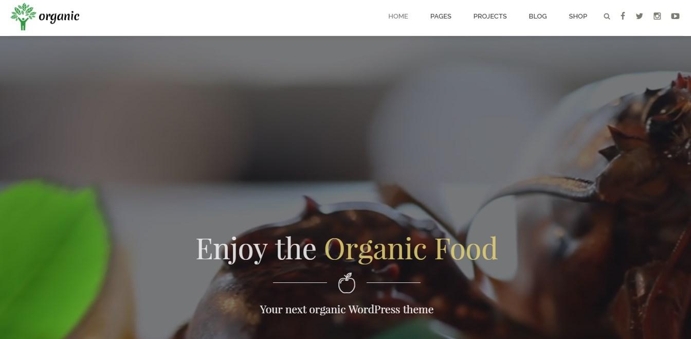 https://documentation.bold-themes.com/organic-food/wp-content/uploads/sites/6/2016/07/29-1.jpg