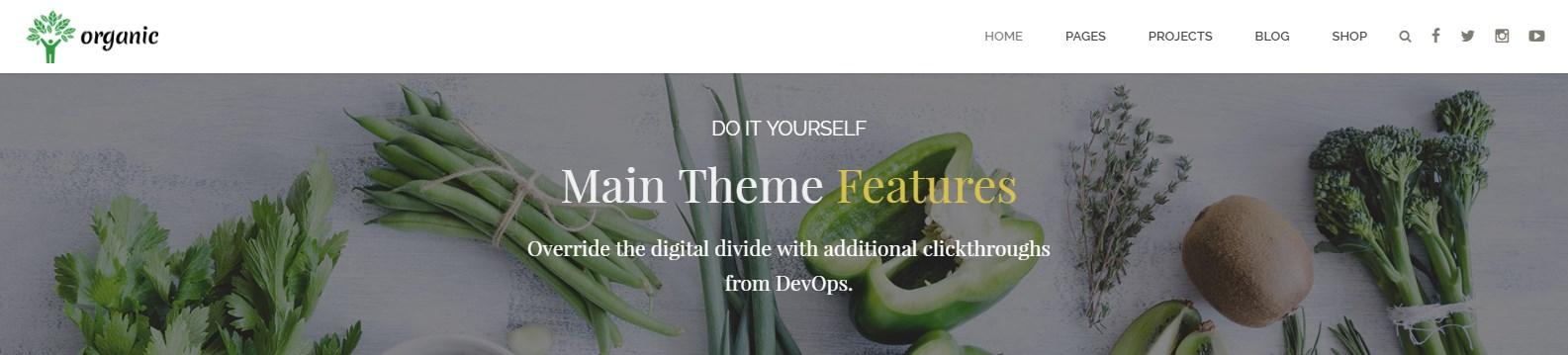 https://documentation.bold-themes.com/organic-food/wp-content/uploads/sites/6/2016/07/32-1.jpg