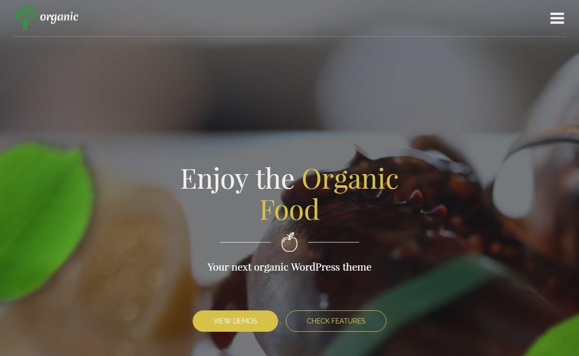 https://documentation.bold-themes.com/organic-food/wp-content/uploads/sites/6/2016/07/33-1.jpg
