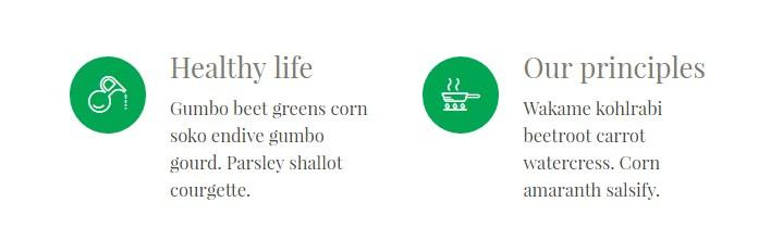 https://documentation.bold-themes.com/organic-food/wp-content/uploads/sites/6/2016/10/service-example.jpg