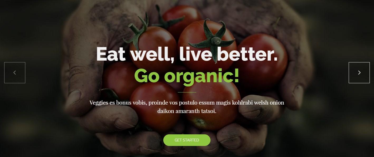 https://documentation.bold-themes.com/organic-food/wp-content/uploads/sites/6/2016/12/slider-example.jpg