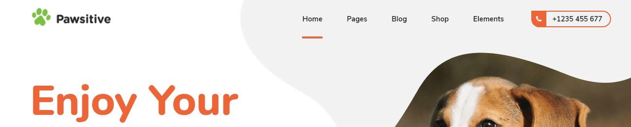 https://documentation.bold-themes.com/pawsitive/wp-content/uploads/sites/45/2019/08/below-menu-true.jpg
