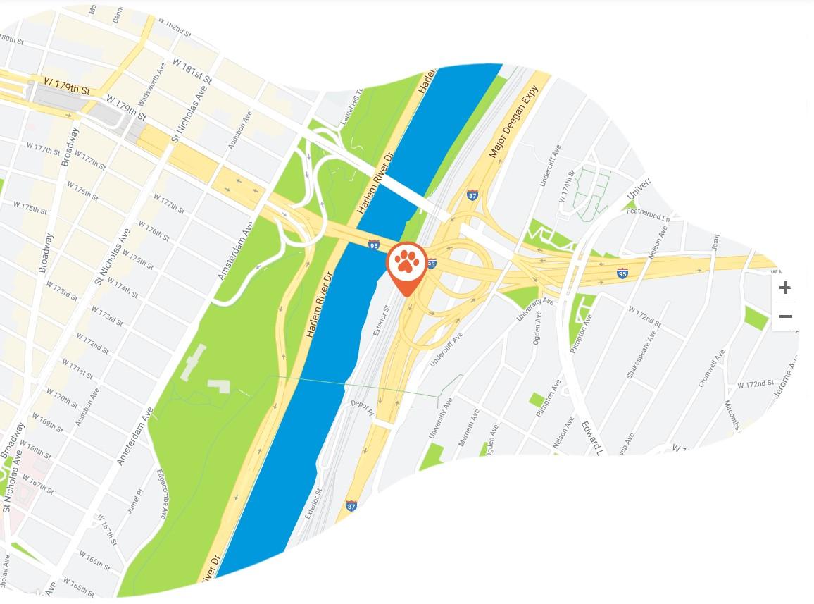 https://documentation.bold-themes.com/pawsitive/wp-content/uploads/sites/45/2019/08/google-maps-f.jpg