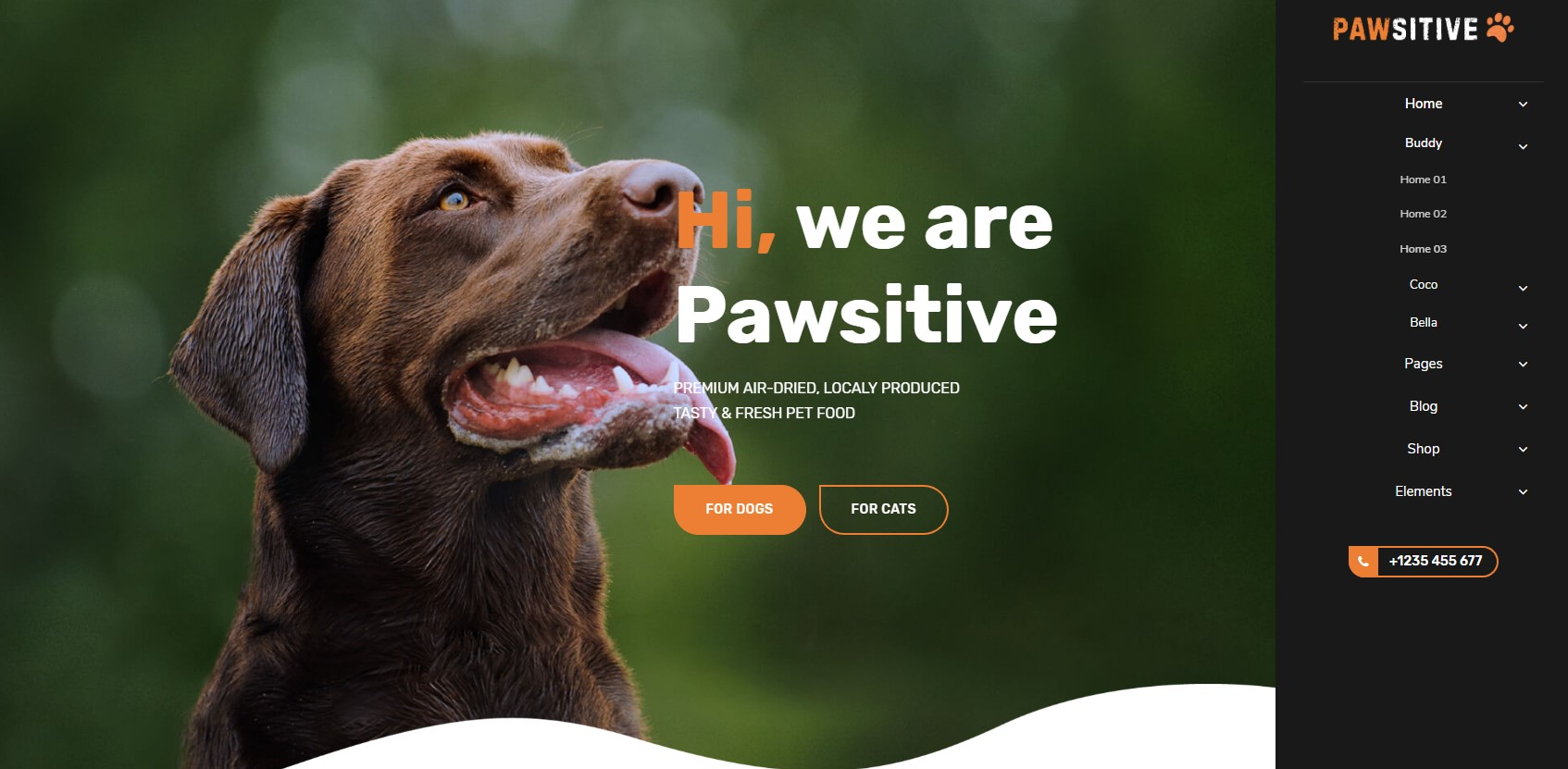 https://documentation.bold-themes.com/pawsitive/wp-content/uploads/sites/45/2019/08/menu-vertical-right.jpg