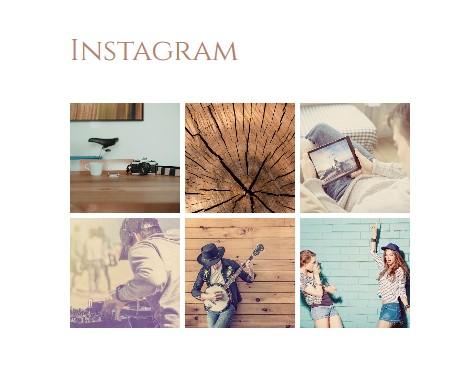 https://documentation.bold-themes.com/primavera/wp-content/uploads/sites/39/2018/12/instagram-f.jpg
