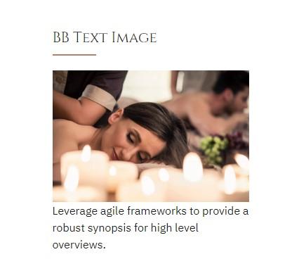https://documentation.bold-themes.com/primavera/wp-content/uploads/sites/39/2019/01/bb-text-image.jpg