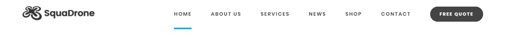 https://documentation.bold-themes.com/squadrone/wp-content/uploads/sites/29/2018/02/alt-logo.png