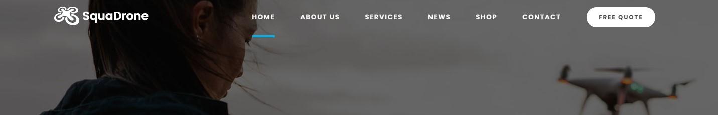 https://documentation.bold-themes.com/squadrone/wp-content/uploads/sites/29/2018/02/below-menu-true.jpg