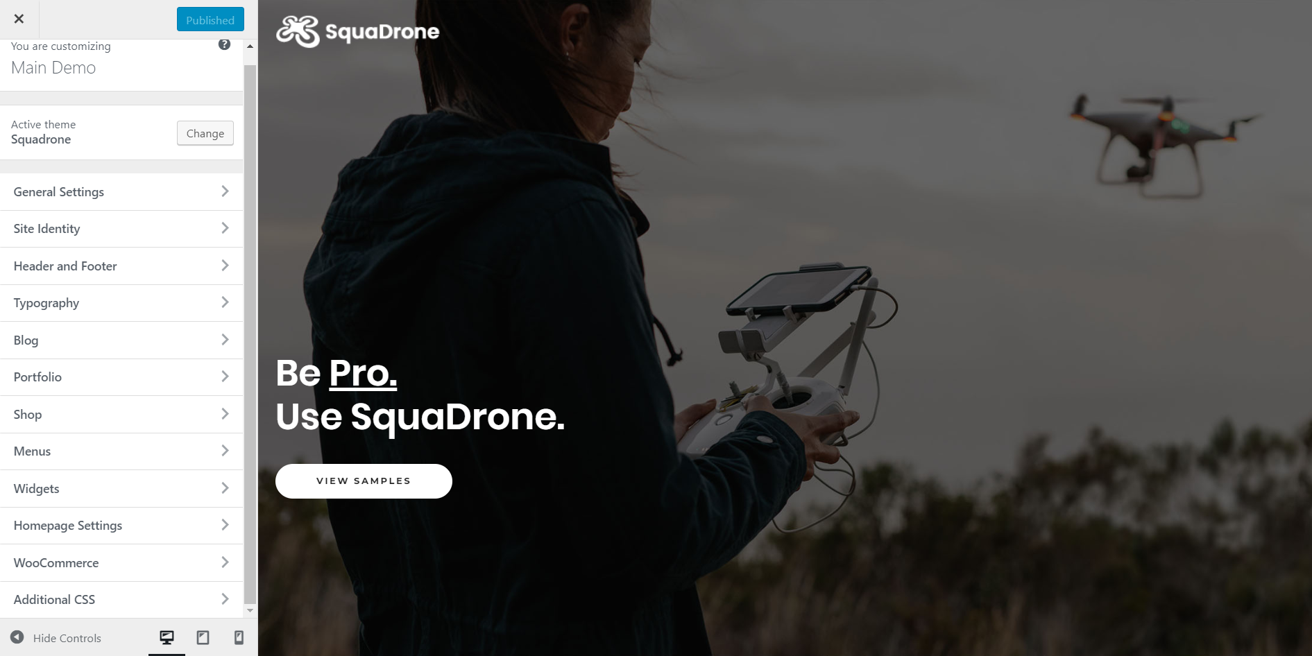 https://documentation.bold-themes.com/squadrone/wp-content/uploads/sites/29/2018/02/customization-1.png