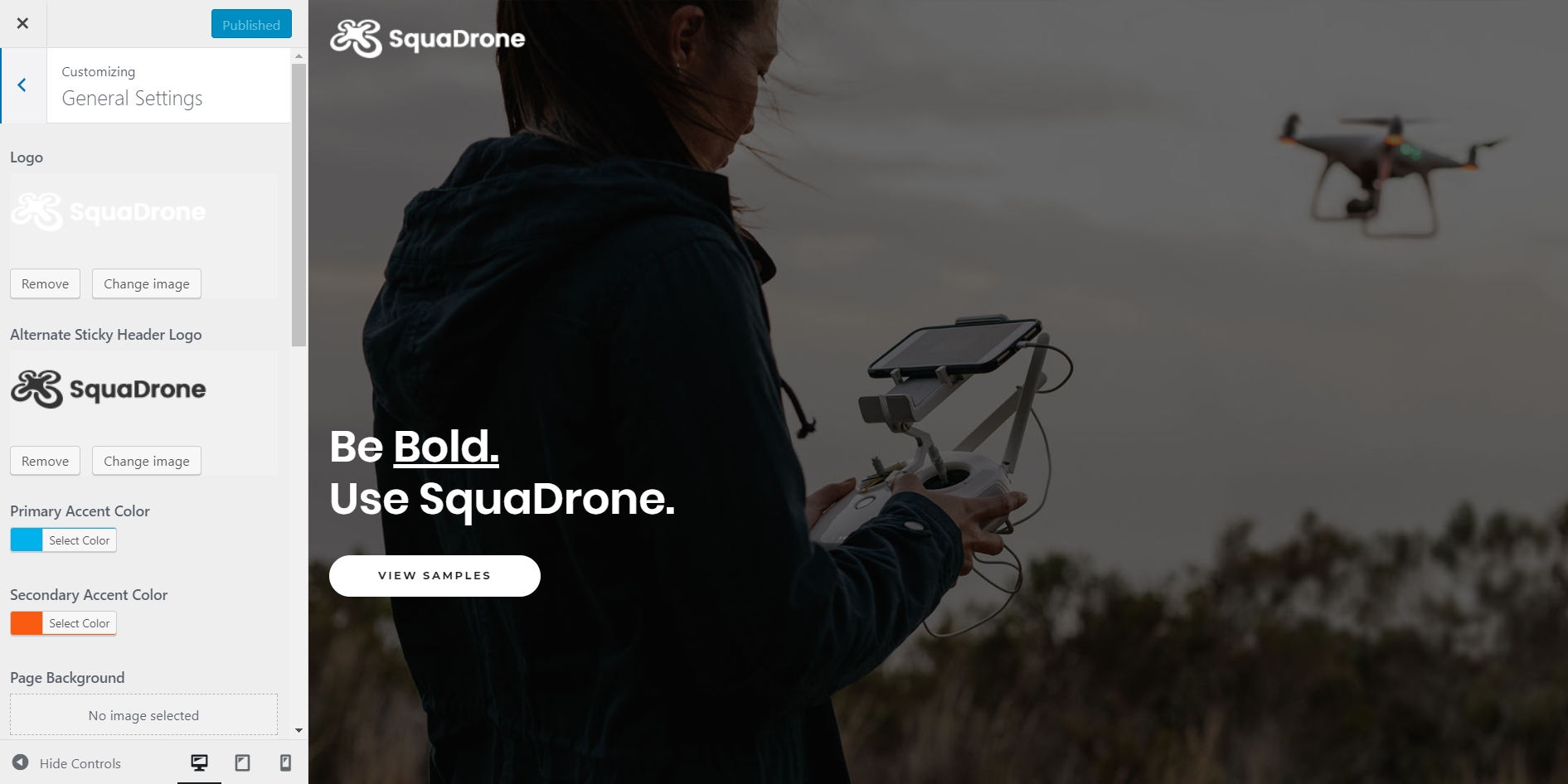 https://documentation.bold-themes.com/squadrone/wp-content/uploads/sites/29/2018/02/general-settings.png