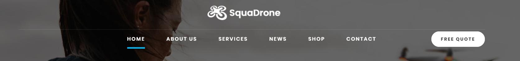 https://documentation.bold-themes.com/squadrone/wp-content/uploads/sites/29/2018/02/menu-below-center.png