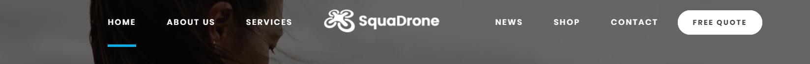 https://documentation.bold-themes.com/squadrone/wp-content/uploads/sites/29/2018/02/menu-horizontal-center.png